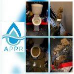Nettoyage et assainissement de WC